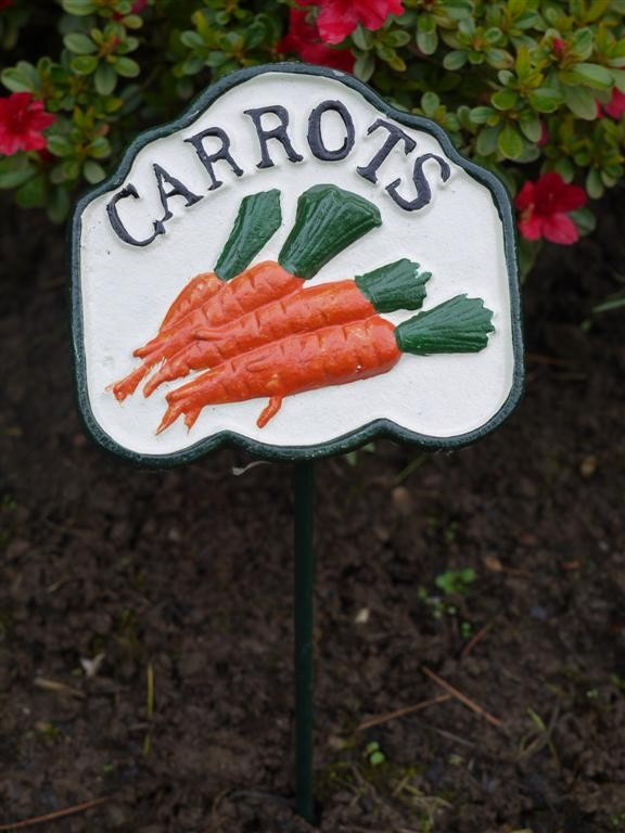 Colourful Carrot Garden Sign Somerset Reclamation Radstock