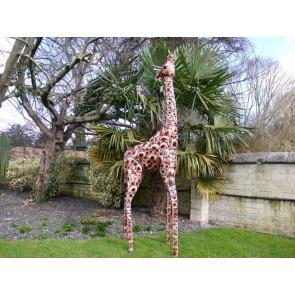 Small Giraffe Life Size