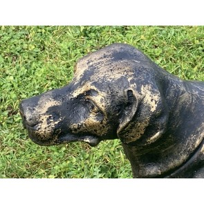 Heavy Cast Iron Working Labrador Dog Standing Life Size In A Bronze Finish