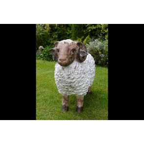 Resin Ram Sheep Statue Standing 52x65x23cm