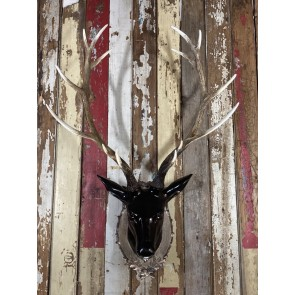 Large Stags Head With Long Antlers In Black Resin Wall Mounted