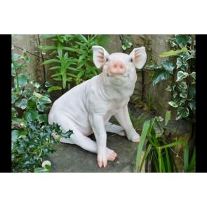 Cute Sitting Pig Piglet Statue 41x42x28cm