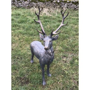 Standing Male Deer Buck Stag With Grand Antlers In Copper Bronze Finish
